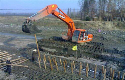 江西萍乡湿地挖掘机出租处