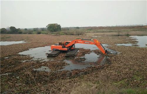广东茂名水陆两用挖掘机租赁处