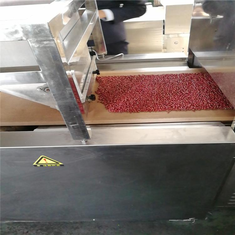 红豆 (4).jpg